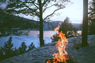 O2O的冰与火之歌:谁能度过凛冽寒冬?