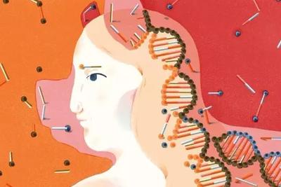 人造器官构建技术走到哪一步:猪儿们为人类捐助器官