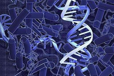 生物DNA调控生长出金纳米花:或创造具有先进功能纳米材料