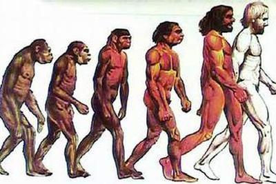 """""""无主DNA""""猜想:地球或有第三种已灭绝原始人"""