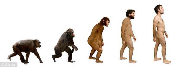 人类其实是很孤单的,特别是当我们回看演化史上十分多样的人族物种的时候。