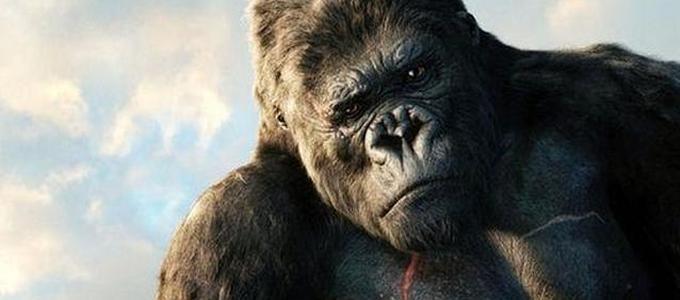 """来看ios的""""大猩猩""""表情图片"""