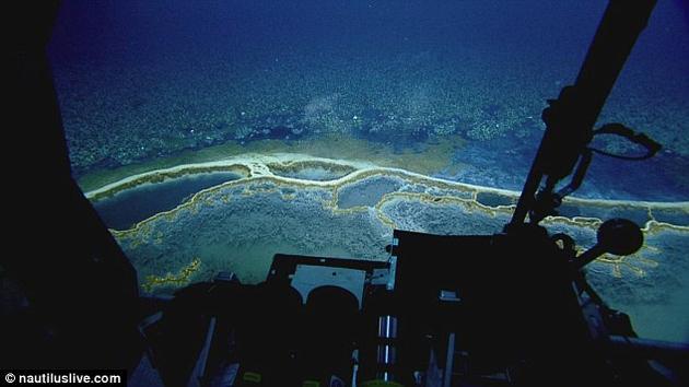 研究团队此次重返卤水池一个主要目的就是绘制该区域的高分辨率勘测图。