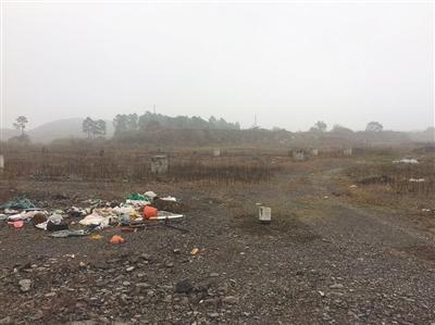 图为浙江莫干山高新区北部园区,乐视德清项目的规划地。新京报记者 张帆 摄