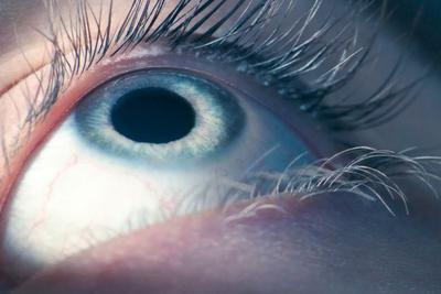 眼科医生要失业?谷歌人工智能算法可自动诊断眼病