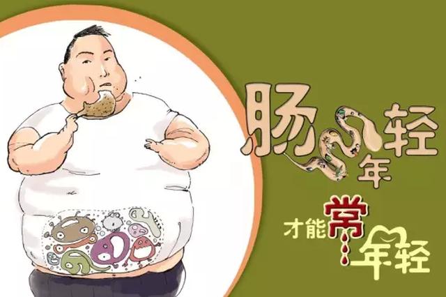 流言揭秘:肠年轻才能常年轻?肠道菌群确实影响人体健康