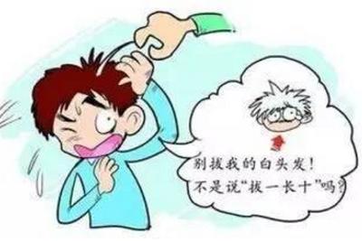 """流言揭秘:白头发""""拔一根长十根""""?说法不科学"""