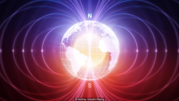 量子效应与地球磁场间的相互作用可能构成了知更鸟的导航器