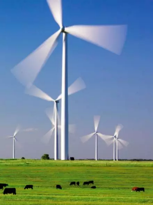 得克萨斯的风力发电机。2015年,风电占据了得州发电总量的12%。图片来源:参考文献[1]
