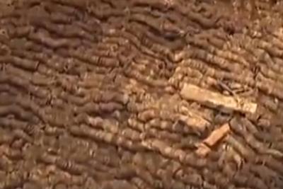 江西海昏侯墓考古:整理十余万枚五铢钱 发现有错版