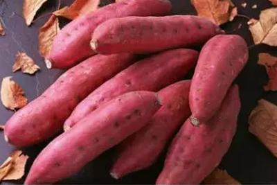 流言揭秘:吃长黑斑的红薯会中毒?不能一概而论