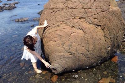 """日本熊本县现""""乳房岩"""":据说有神秘功效"""
