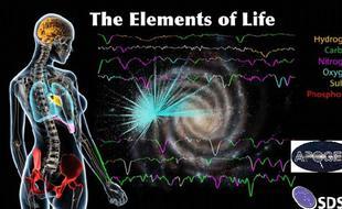人体实际是由星尘等恒星物质组成