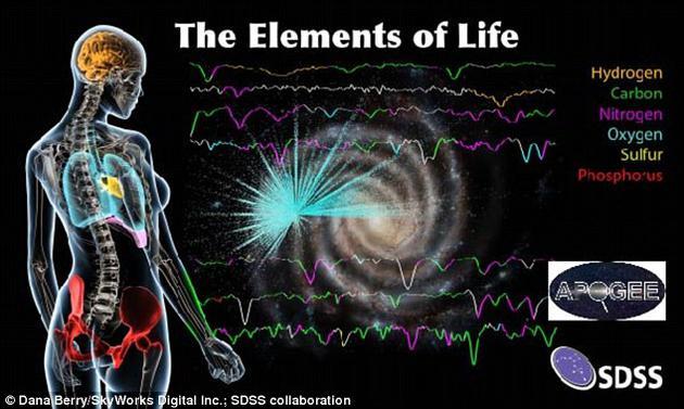 光谱中的不同颜色代表了恒星大气中各种元素。左侧人体不同部位采用不同颜色标示,表明颜色对应的元素对人体不同部位的重要作用,从肺部的氧到骨头中的磷等。