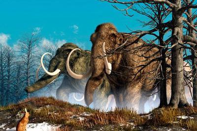 """科学家称两年内可使猛犸象起死回生:与亚洲象杂交""""复活"""""""