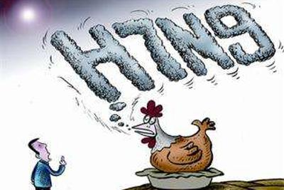 专家:此次H7N9病毒变异不是坏事 对人类影响没太多变化