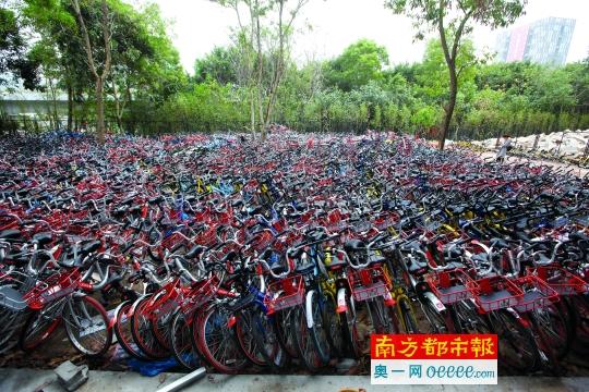 深圳被锁共享单车正分批取回 南山城管称已暂