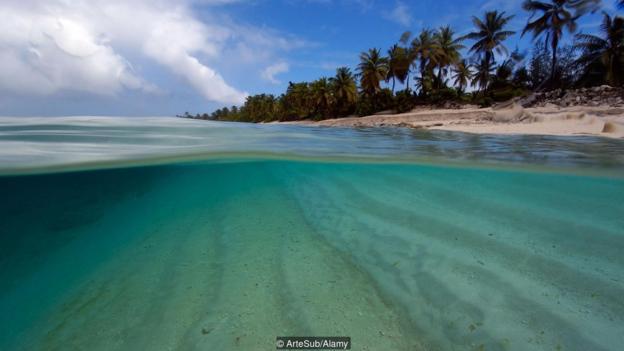 也许生命最早是在浅海中形成的。