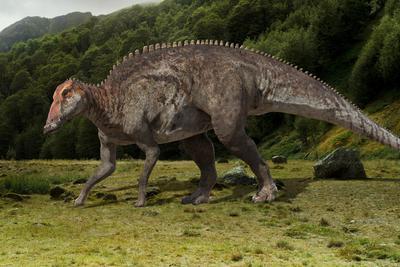 中外科学家在吉林延边发现大量恐龙足迹