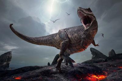 1.8亿年前恐龙的最后一餐:植物种子保存完整