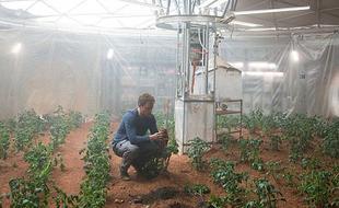 火星救援:模拟火星土壤种出马铃薯