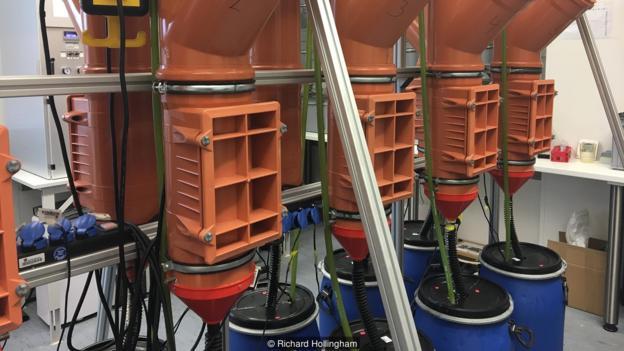 这样一个装有大量尿液的实验室却没有任何令人不悦的气味。