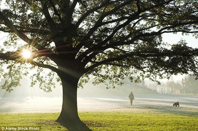 每天平静的生活让我们很少思考一旦遭遇重大灾难时自己将如何应对