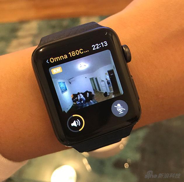 在Apple Watch上觀看家裏狀況