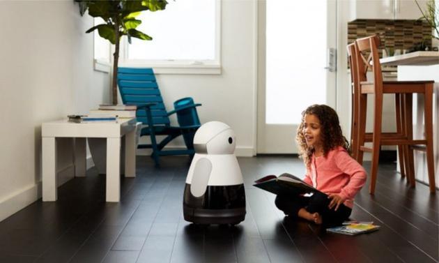 """是机器还是凶器?机器人""""行凶""""后,人机如何寻共存?"""