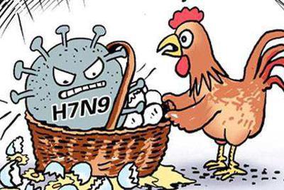 中国疾控中心:H7N9病毒尚不会造成流感大流行