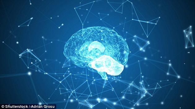 科学家指出,多巴胺可以精确控制我们在短时间内做出的决策,只要测定制定决策前大脑中的多巴胺水平,便可准确判断决策结果。