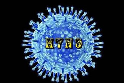 """H7N9病毒""""凶猛""""原因被找到 有助了解禽如何能使人致病"""