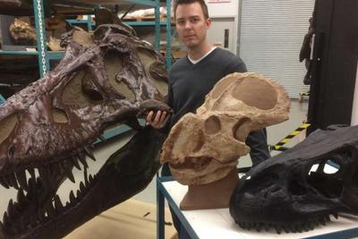 科学家对恐龙性别差异证据提出质疑