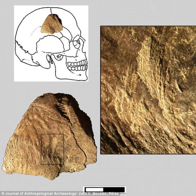 在一处西班牙境内的一处洞穴内已经发现超过20度个古人类骨骼遗骸,反映出丰富的史前人类生活信息。这些骨骼上可以辨认出石器敲打,火烧和人类牙齿啃咬的痕迹