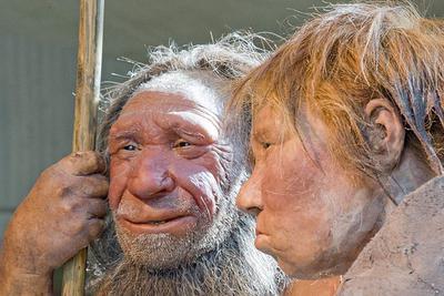 人类祖先的食人现象:可能并非为满足营养所需