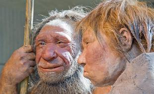 人类祖先吃人:并非为营养