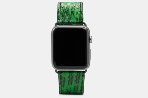 COACH其实也做苹果表带 这画风略狂野