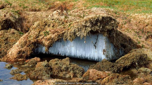 中国西藏地区的永冻土层