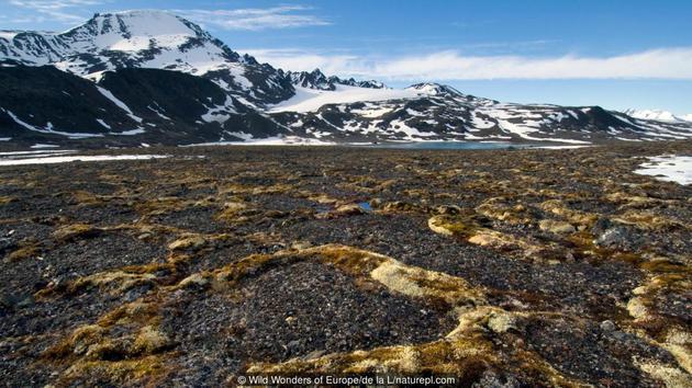 挪威斯瓦尔巴群岛上的冻土层景观
