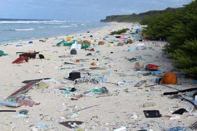 南太平洋无人小岛塑料垃圾污染全球第一