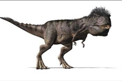 """多亏世上的皮肤化石,霸王龙是否""""毛茸茸""""有了定论"""