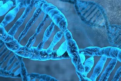 Cell改写教科书:首次亲眼见证!DNA复制与想象不同