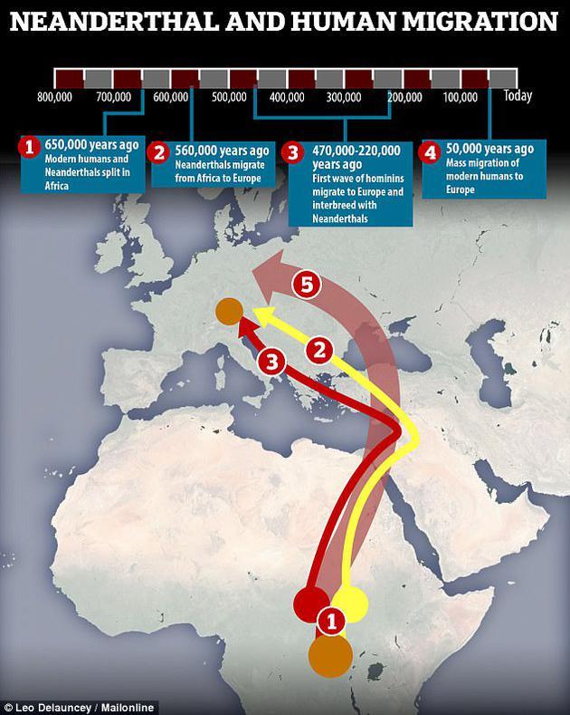 最新研究发现小群体早期人类在47万-22万年前从非洲迁移至欧洲,他们在欧洲与穴居人交配。该图表显示这一事件的时间范围。