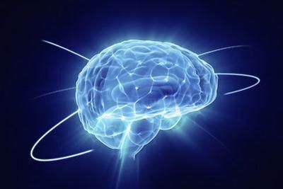 """中国科学家破解""""胜利者效应""""的脑秘密"""