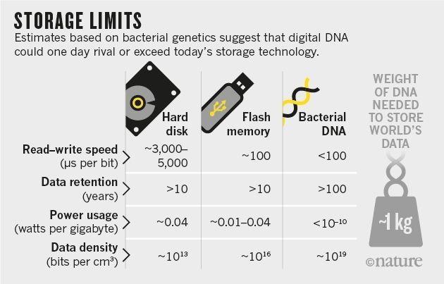 硬盘过时是迟早的事 但用DNA来存储是不是太科幻了?