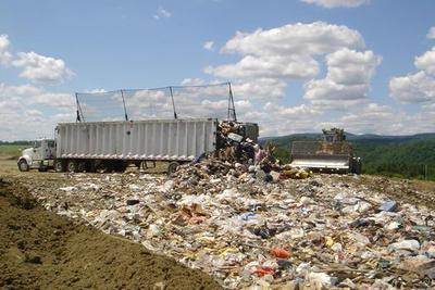 人类制造了82.6亿吨塑料 重量相当于10亿头大象