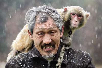 如果人是猴子变的,那世上为什么还有猴子?