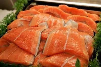中国系首个研发转基因鱼国家:科学角度已具应用条件