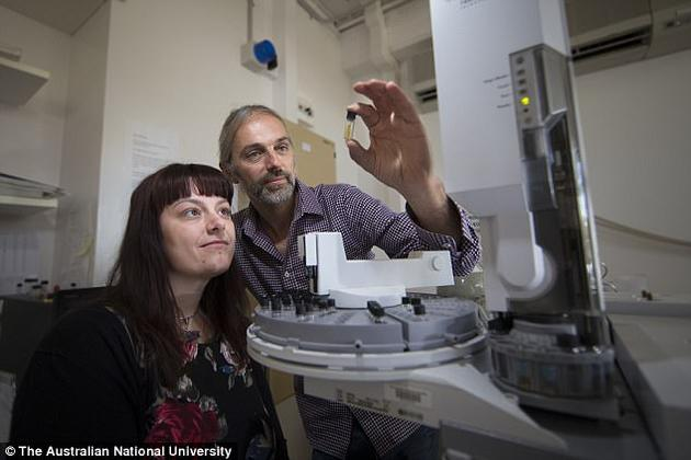 研究人员发现类固醇含量较高,增加了100-1000倍,其中包括较大复杂生物活跃性增强。