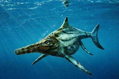 科学家发现史前海生爬行动物新物种 似尼斯湖水怪